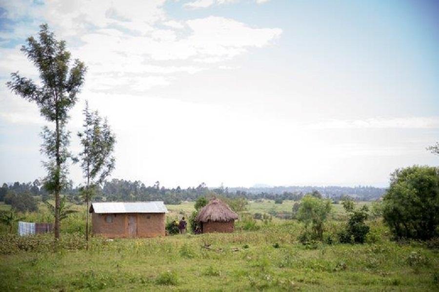 image of the Kenyan countryside